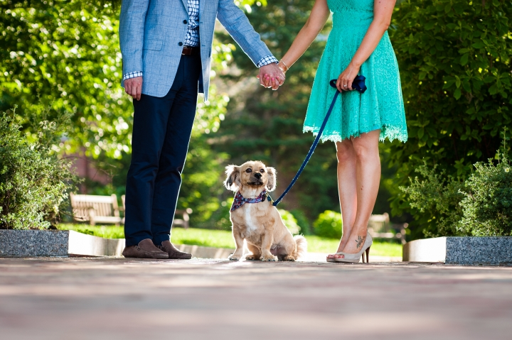 adorable puppy sits in between his owners during their outdoor engagement session