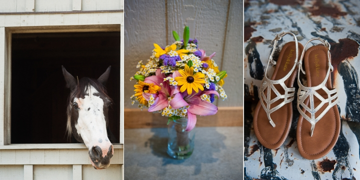 asheville wedding on a farm