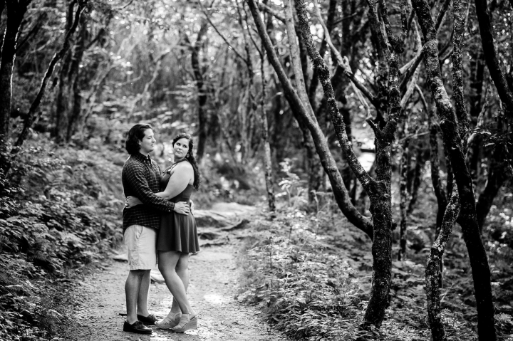 blue ridge parkway engagement session