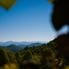 Vineyards at Betty's Creek a luxury NC mountain wedding venue