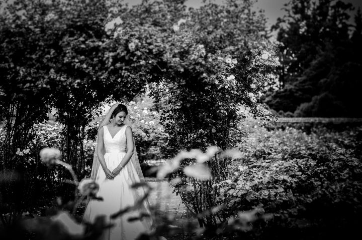biltmore estate bridal portrait