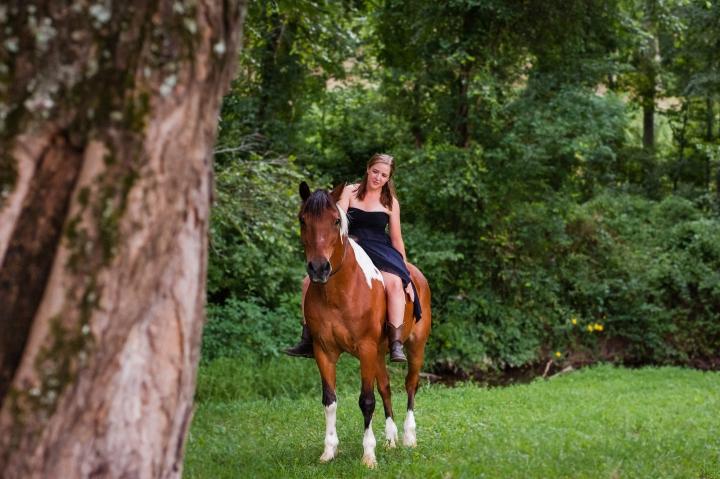 tryon nc equine photograph
