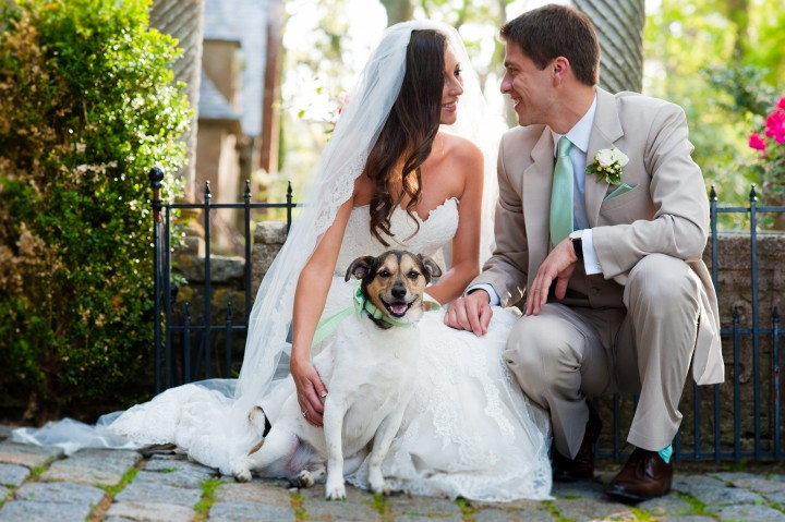 cute bride and groom pose with their dog for a quick portrait