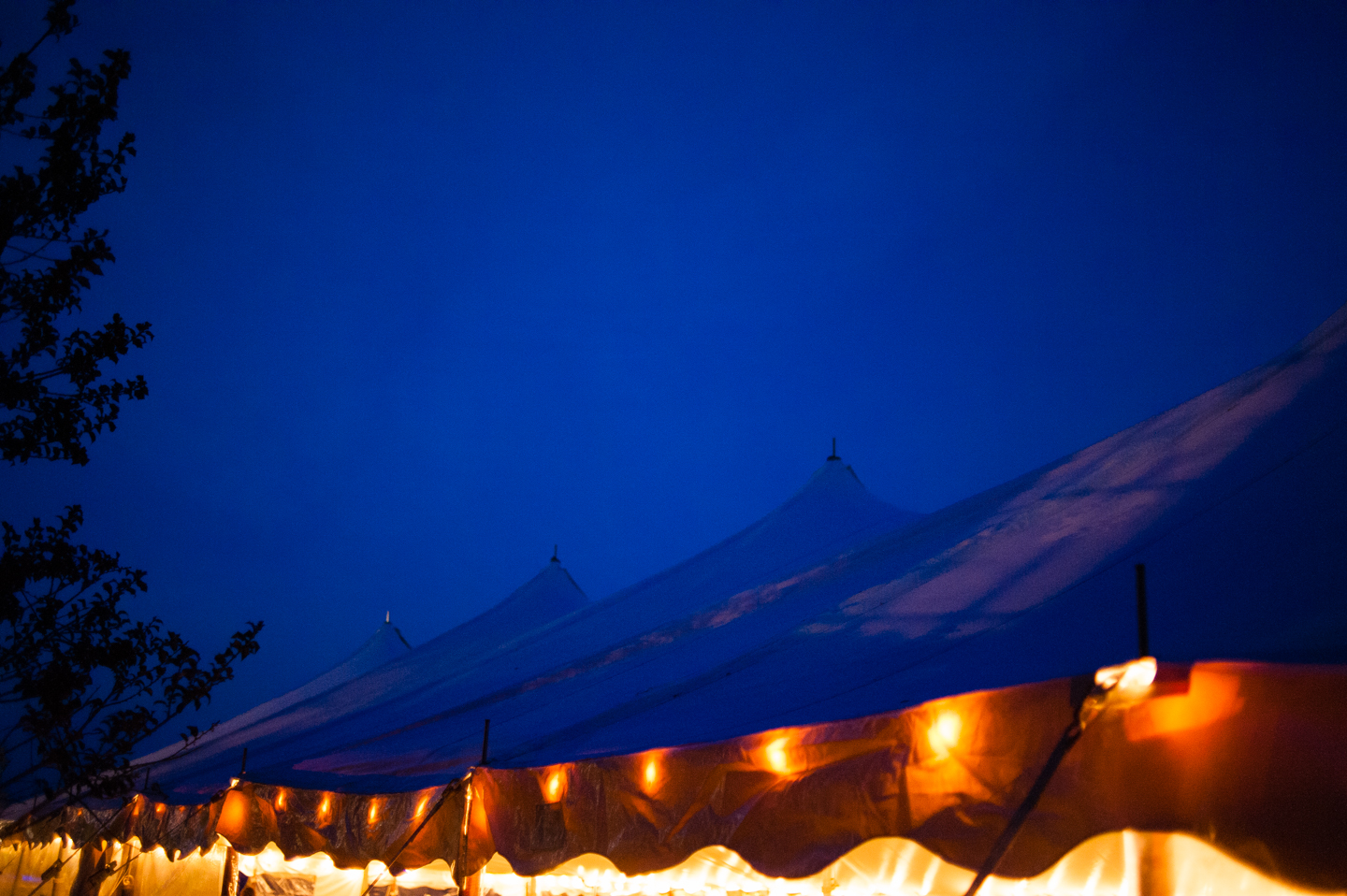 the reception tent all light up at night with twinkly lights