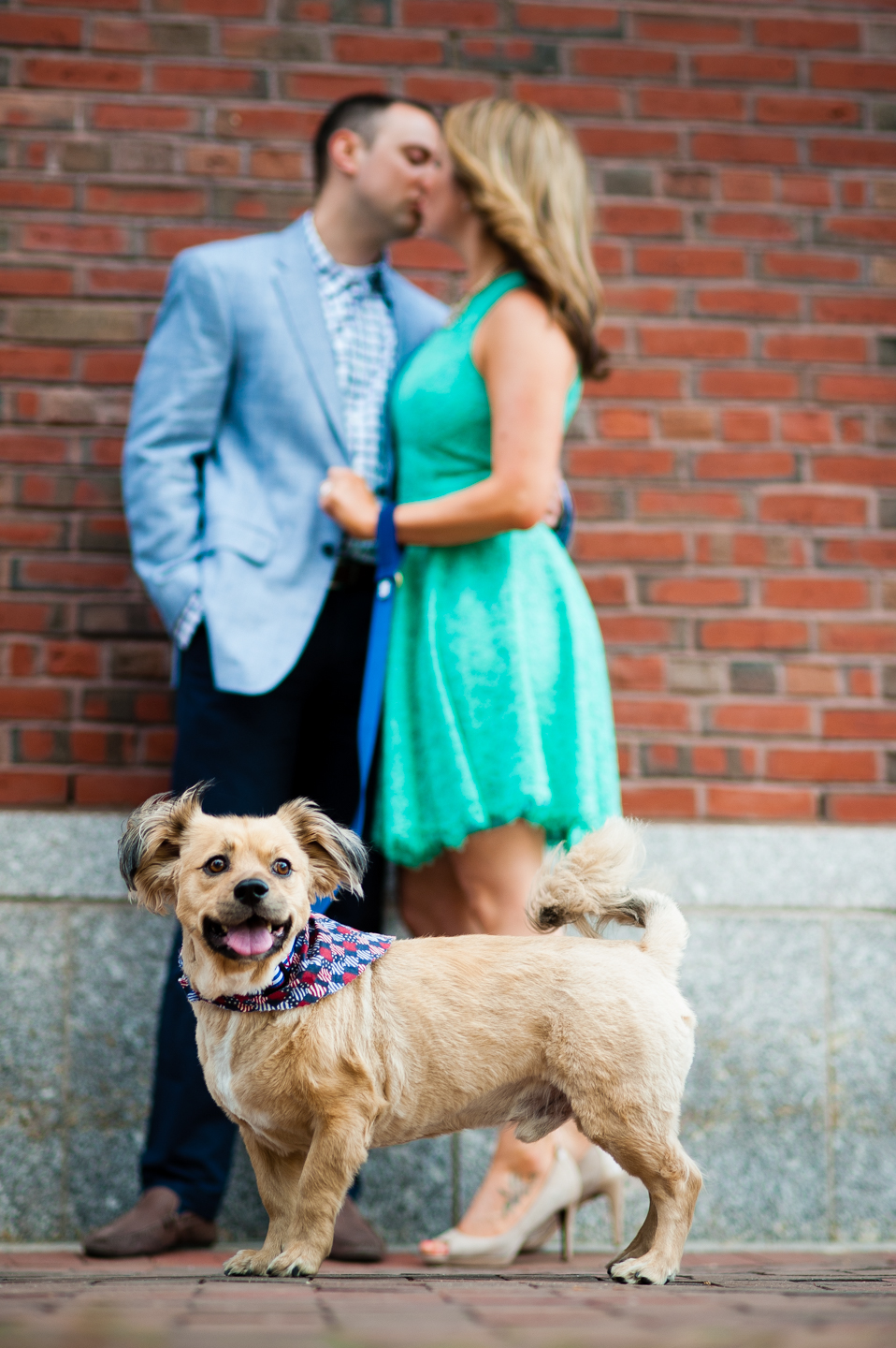 cute puppy is the center of attention with engaged couple kissing in the background