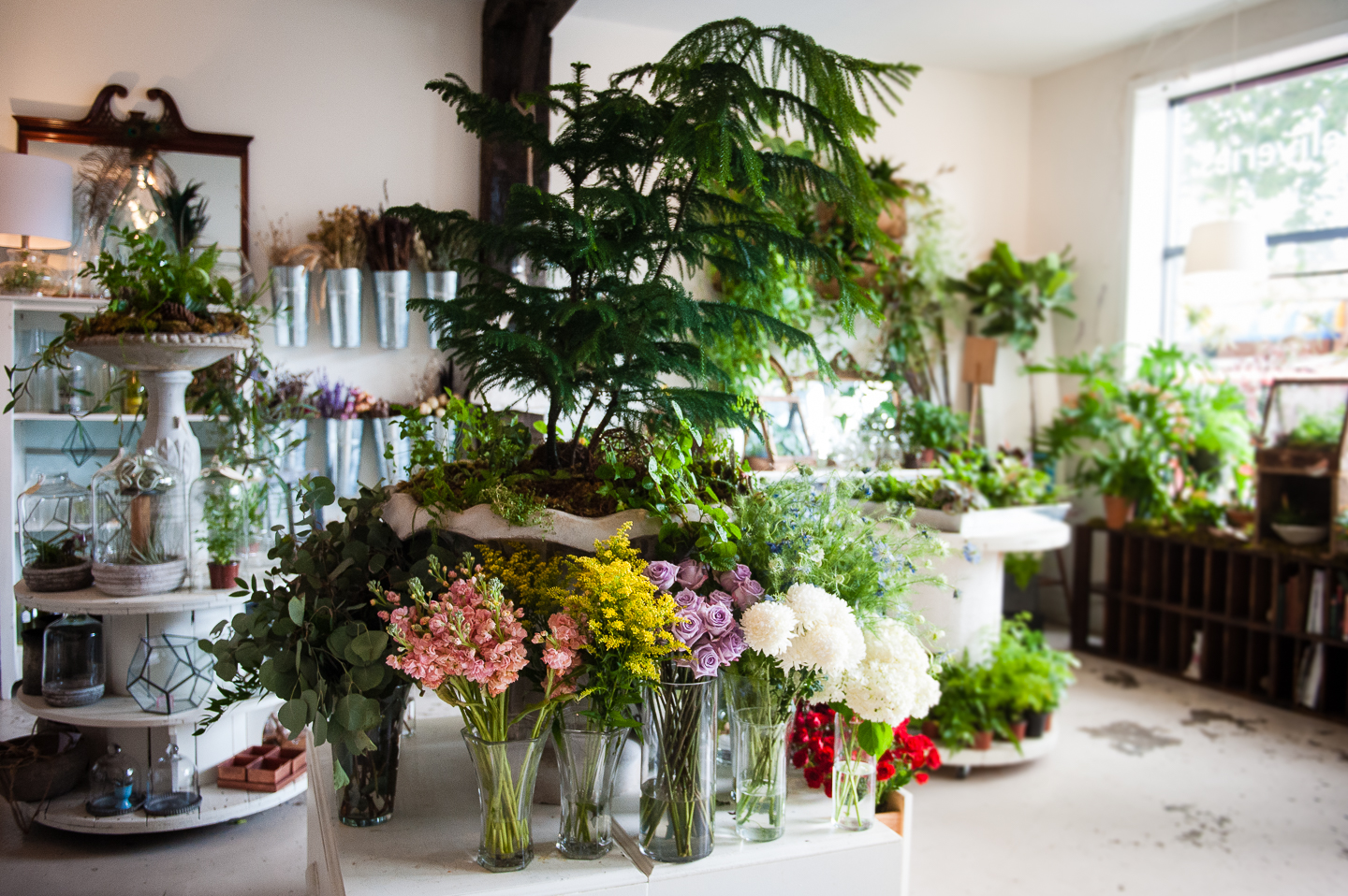 Floras storefront with gorgeous flowers adorning the space
