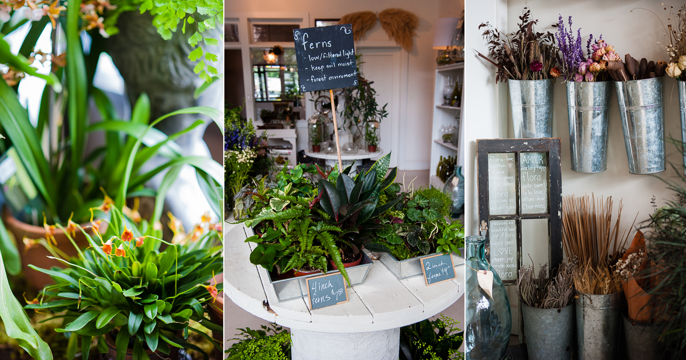3 images of floras gorgeous storefront where plants and flowers are everywhere