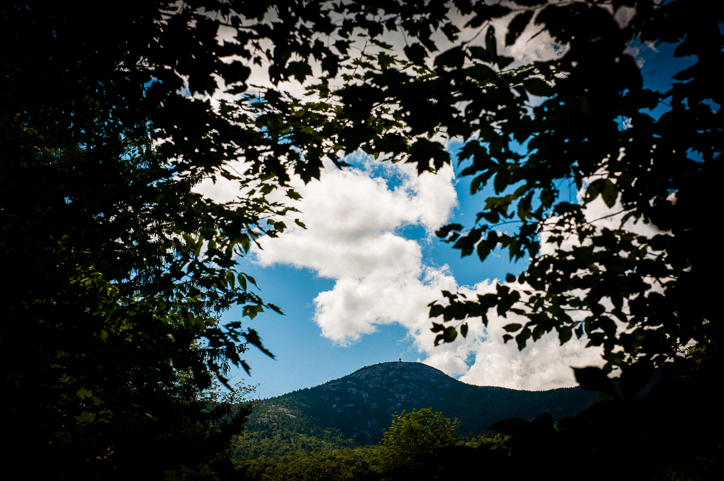 Cardigan mountain framed by trees was the backdrop for most of this gorgeous wedding day