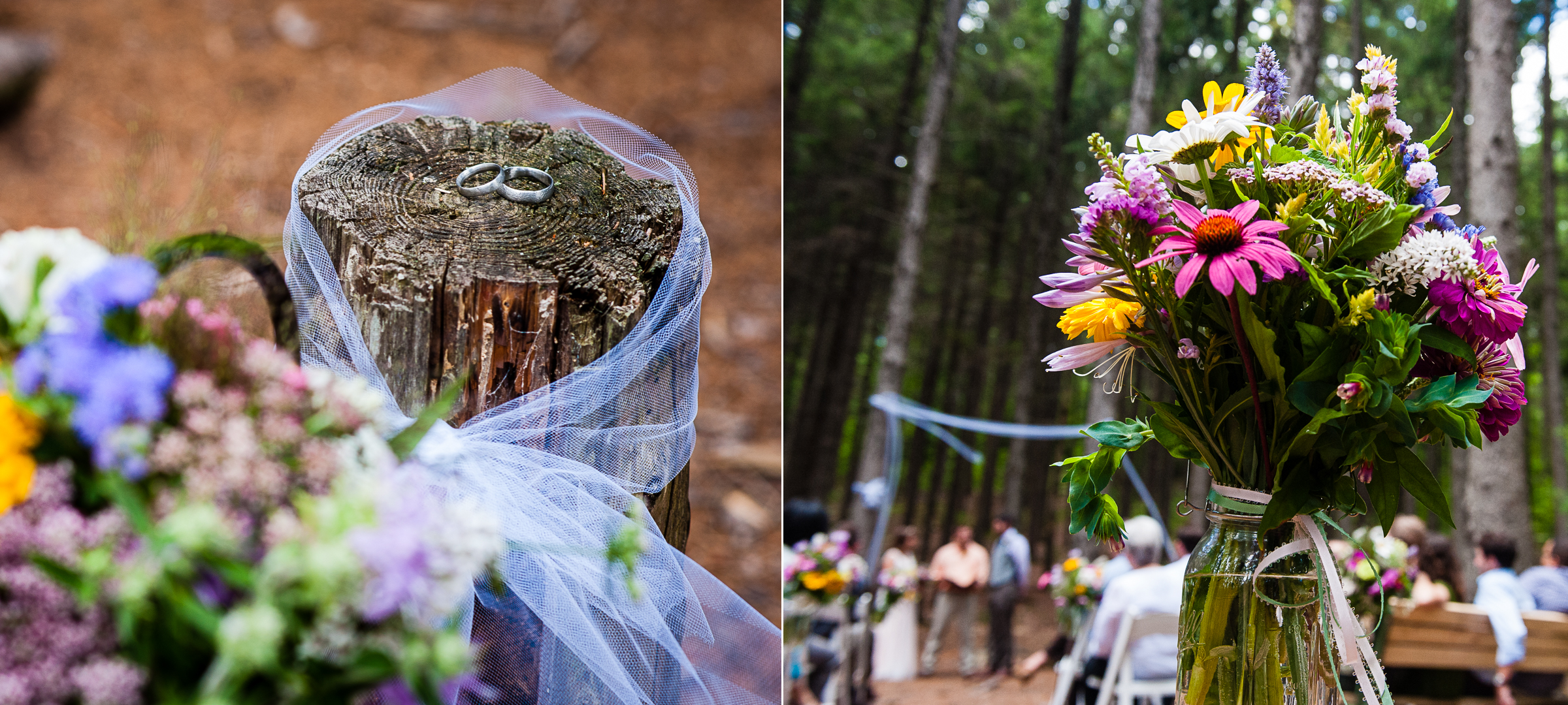 the bride and grooms beautiful wedding bands were placed on a tree stump  nearby for easy access