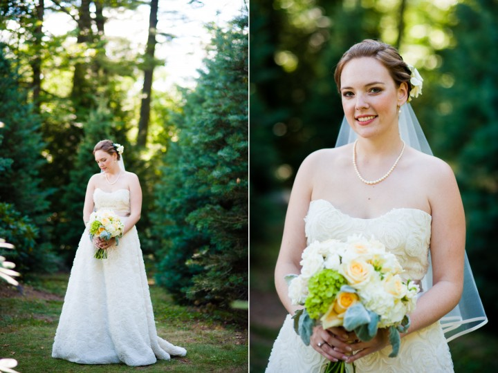 gorgeous bride poses for some elegant woodsy bridal portraits in a stand of pine trees
