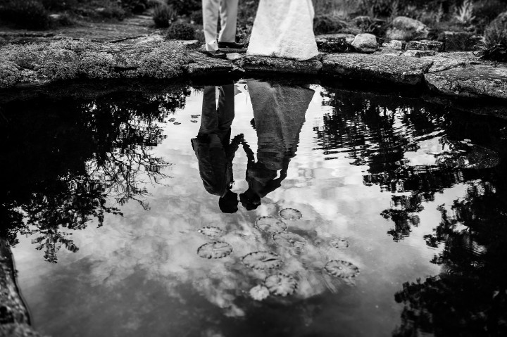 reflection of couple kissing in a lilly pad covered pond