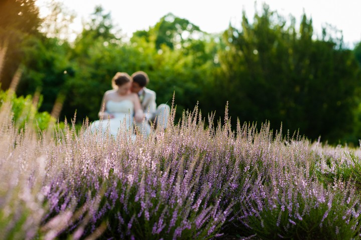 beautiful purple lavender bed in the foreground of this bride and groom portrait