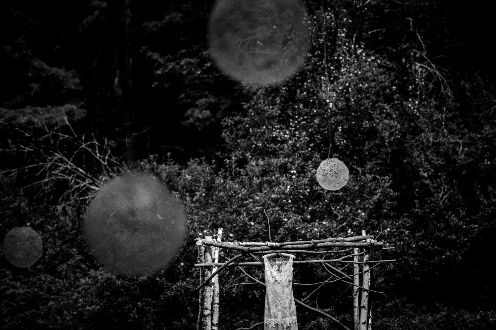beautiful lace wedding gown hangs from a birch trellis