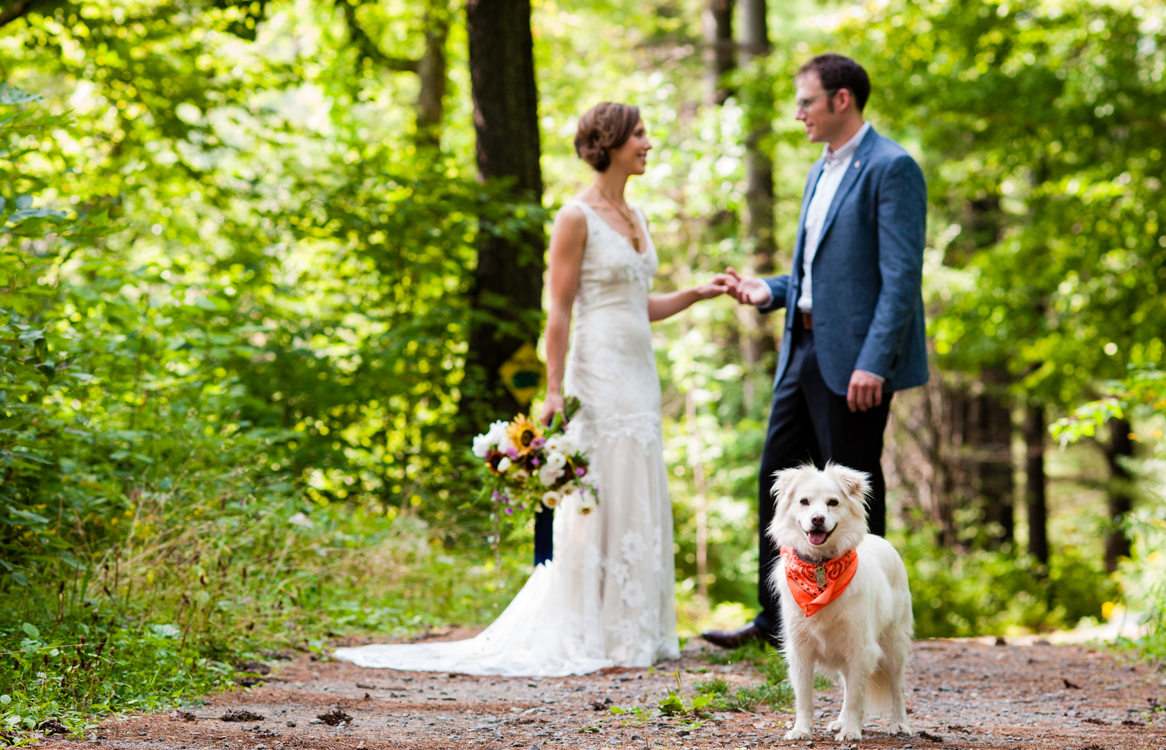 adorable dog stands on a wooded path with bride and groom