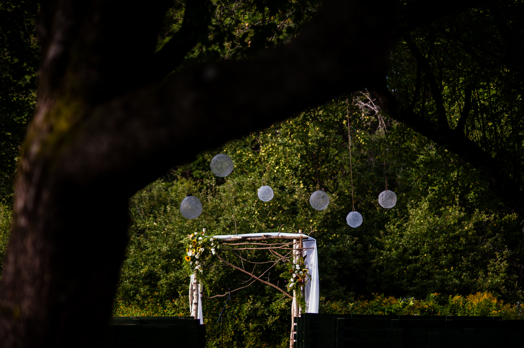 beautiful ceremony location under apple trees with beautiful handmade hanging globes