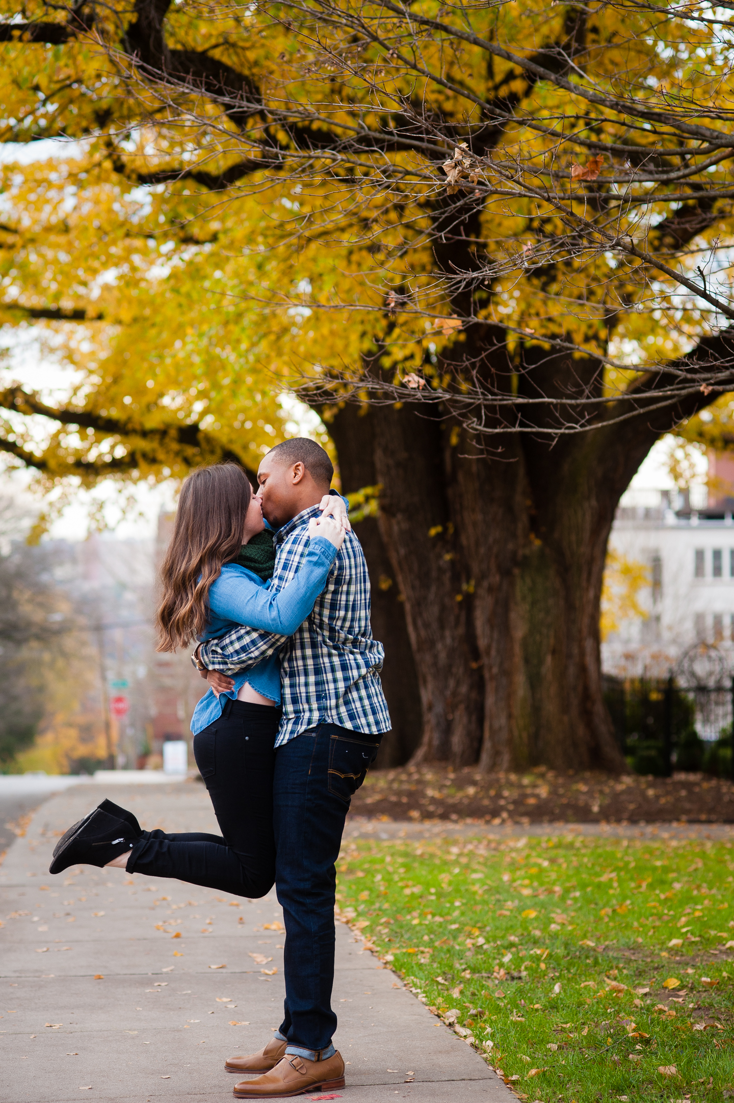 young couple kisses under a yellow maple tree during their asheville engagement session