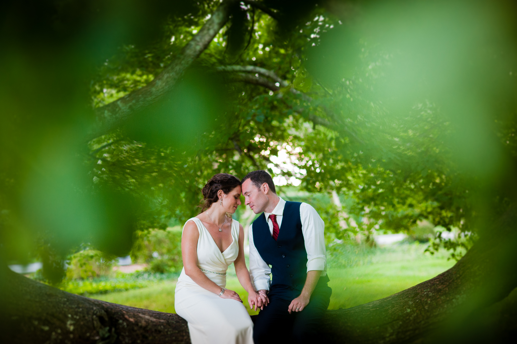 bride and groom embrace under big tree during outdoor wedding