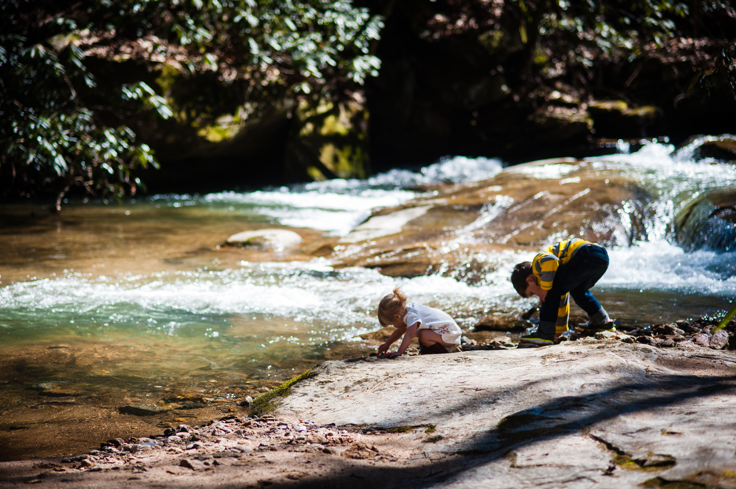adorable kids explore by the creek during their outdoor photo session