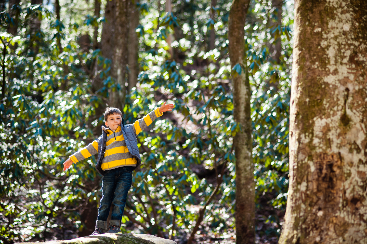 boy stands on big rock during his outdoor lifestyle portrait session