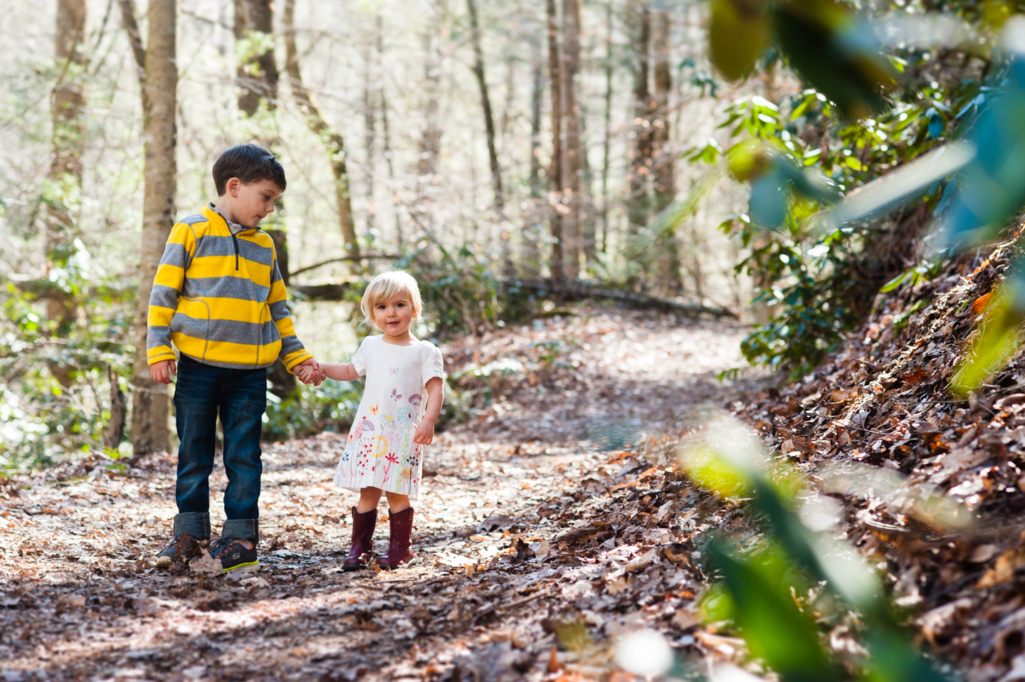 adorable kiddos hold hands on wooded path