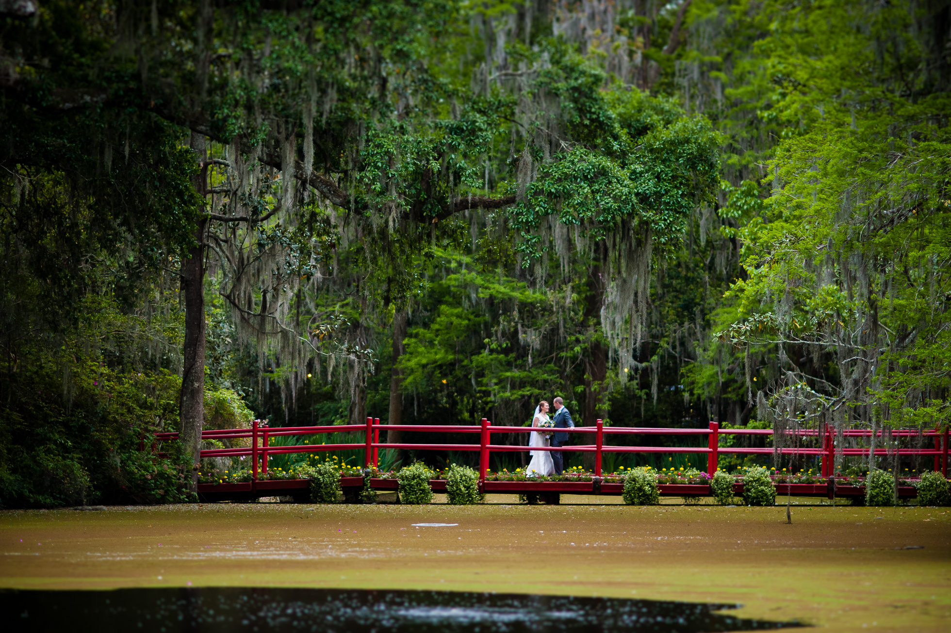 gorgeous magnolia plantation wedding day couples portrait
