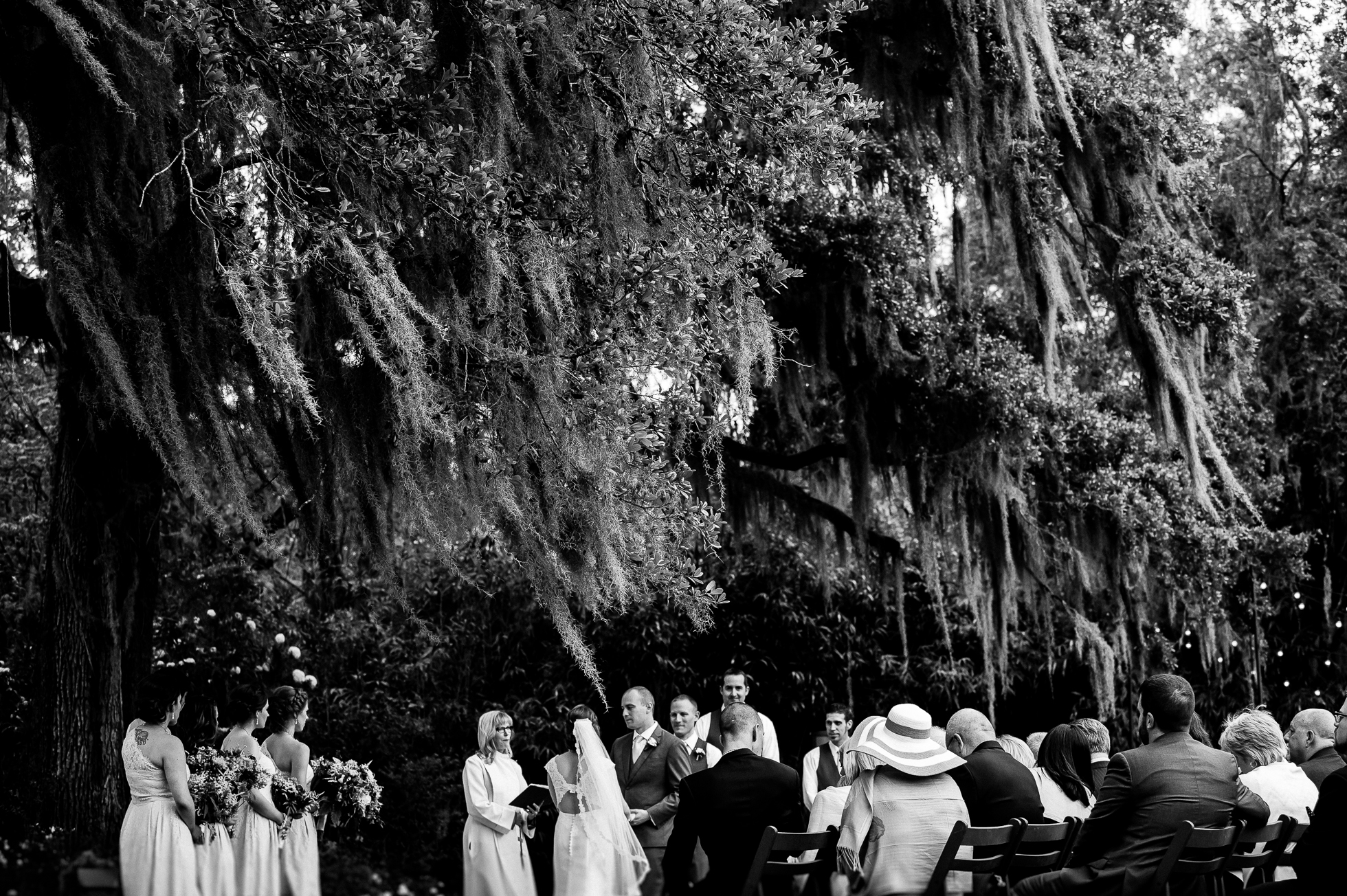 beautiful spanish moss framing a Magnolia Plantation wedding ceremony