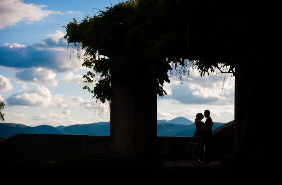 Biltmore estate wisteria silhouette of engaged couple