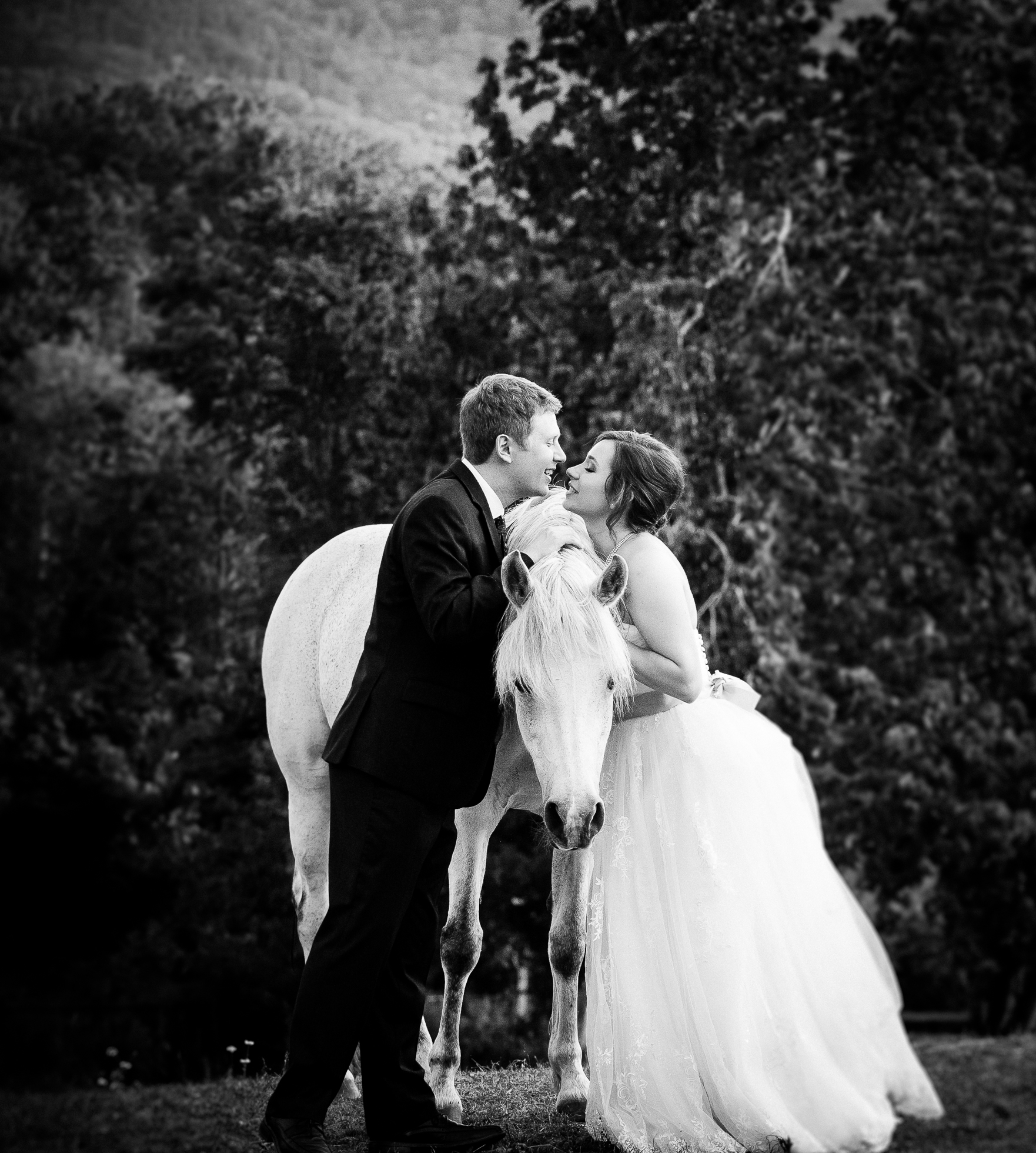 asheville equestrian wedding portrait