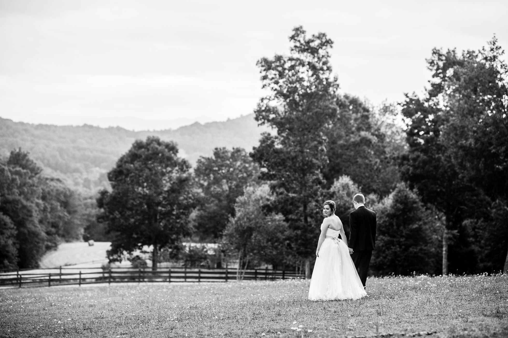asheville wedding portrait in gorgeous field