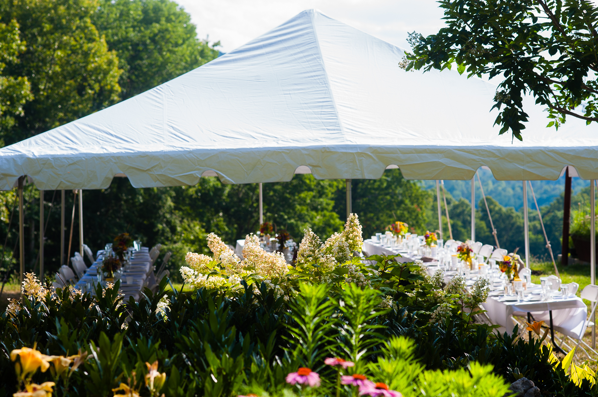 beautiful tented wedding in ashevilles blue ridge mountains
