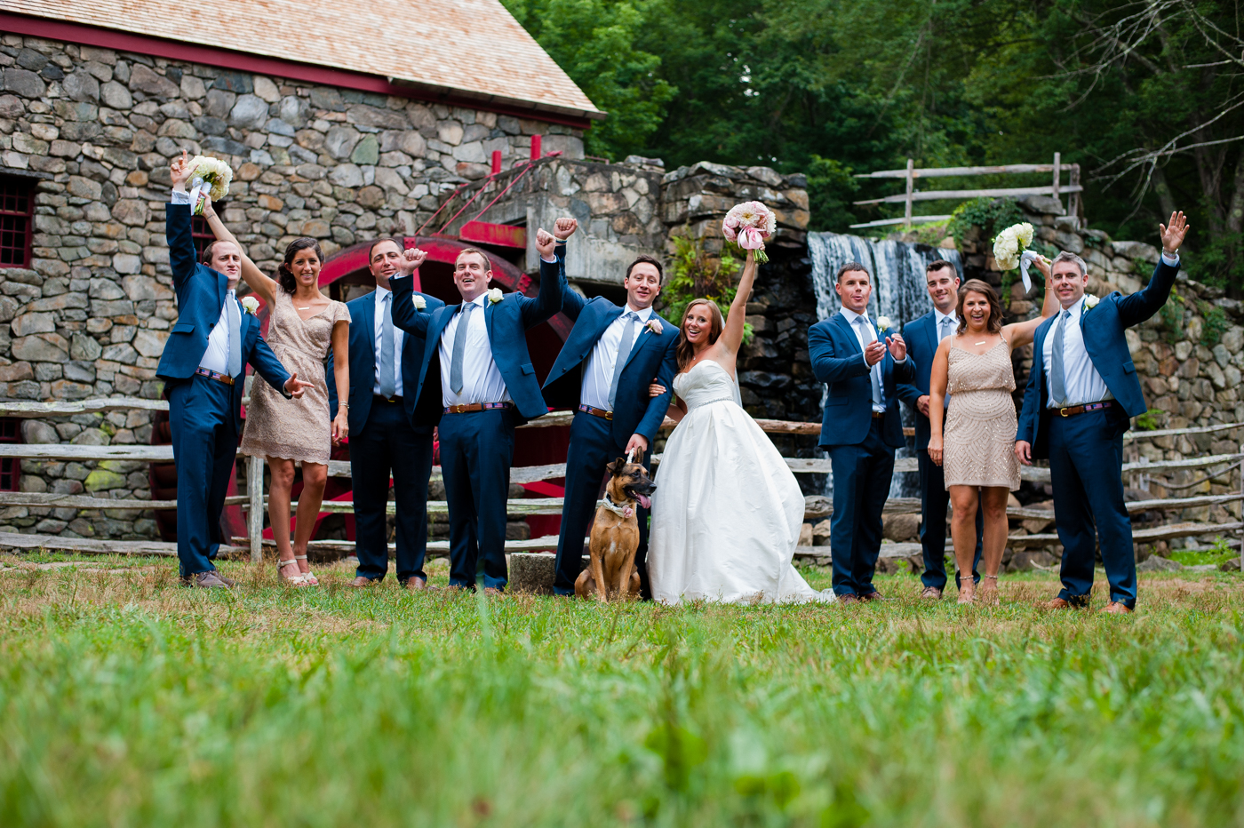 asheville wedding party with german shepherd