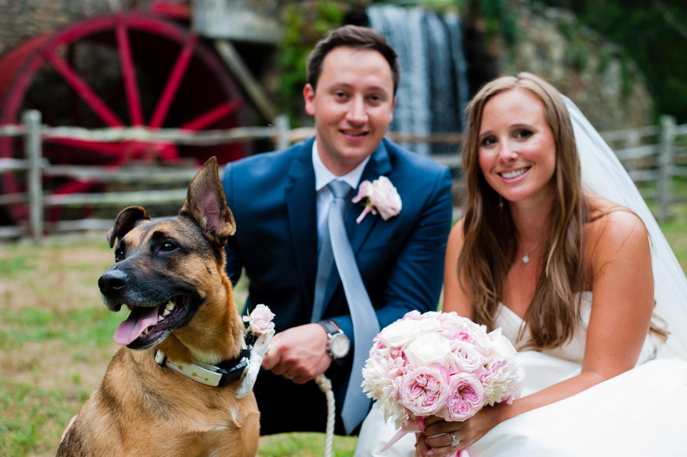 bride and groom pose with their german shepherd