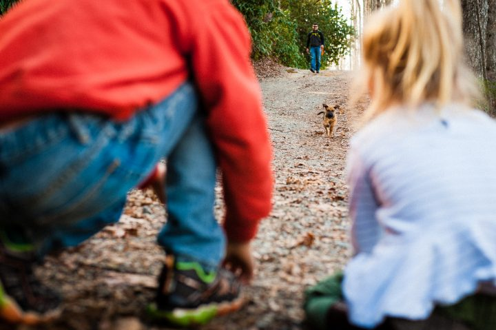 asheville family and pet photographer