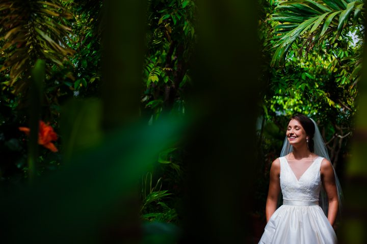 bridal portraits at the biltmore estate conservatory