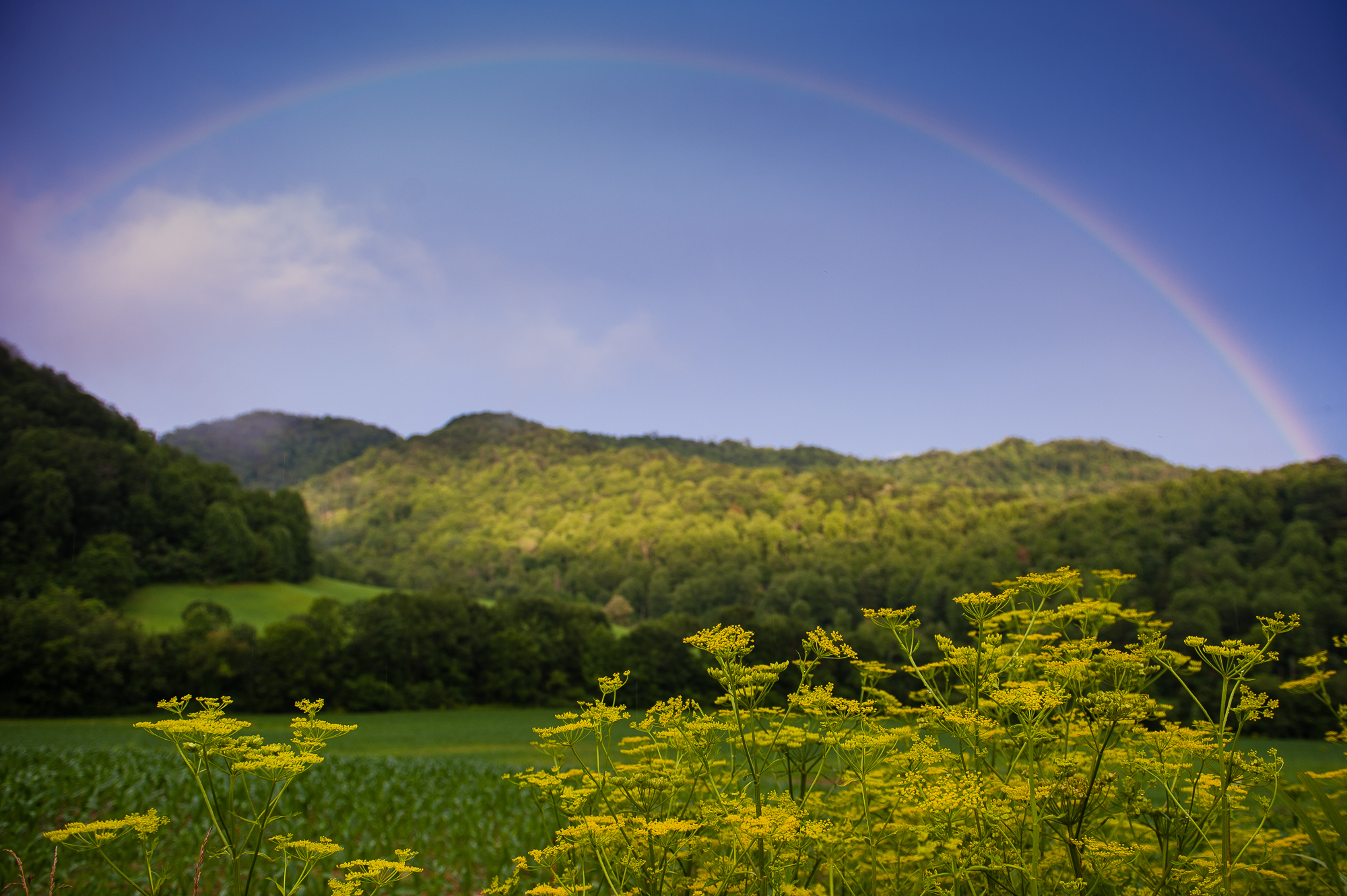 beautiful rainbow in the mountains
