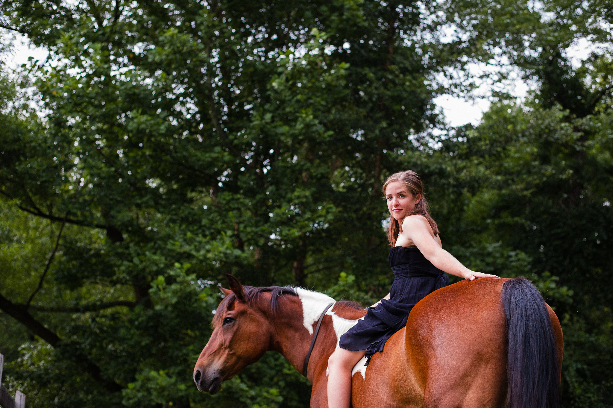 lifestyle equine portraiture in polk county