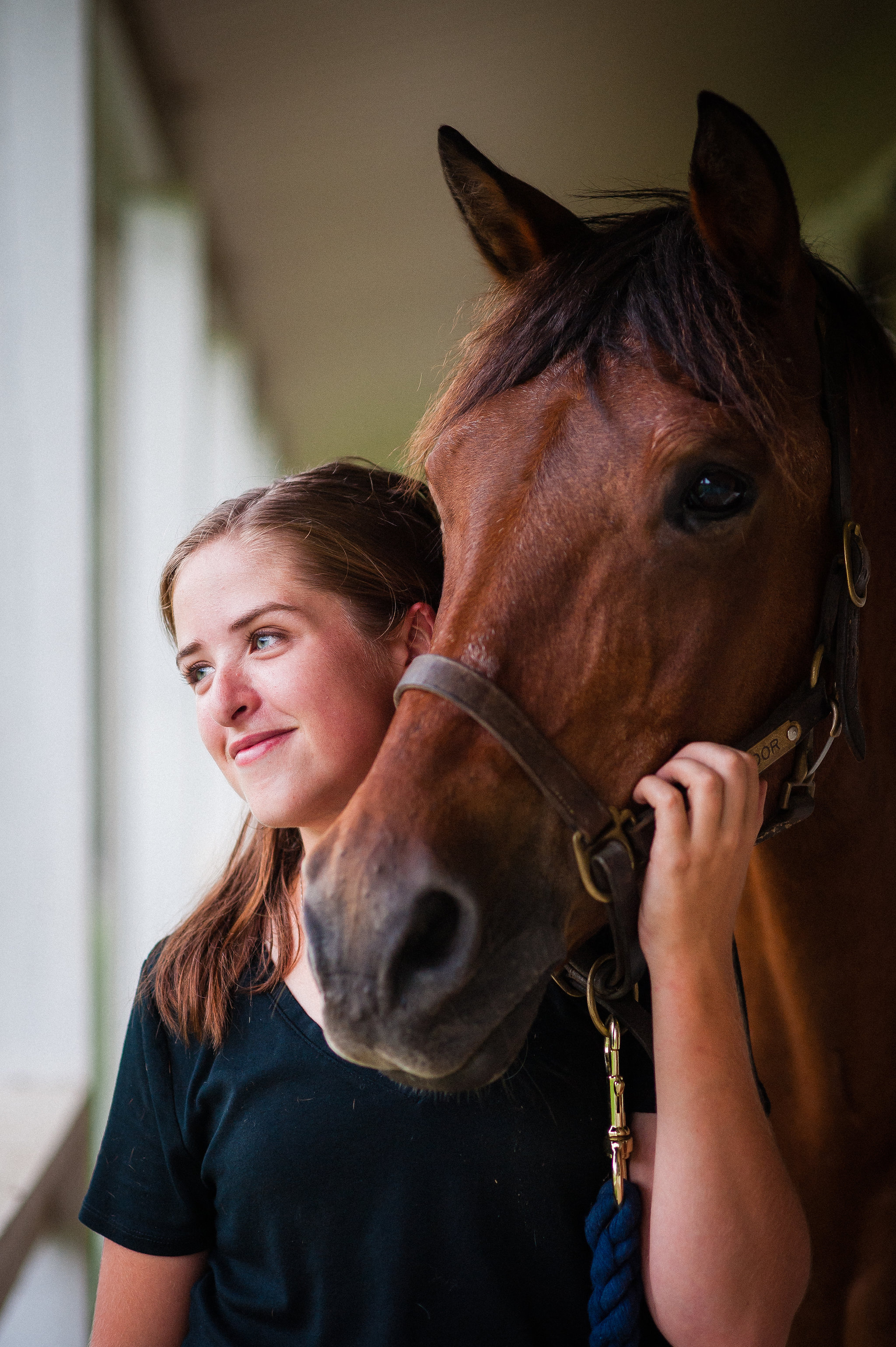 tryon equine photographer