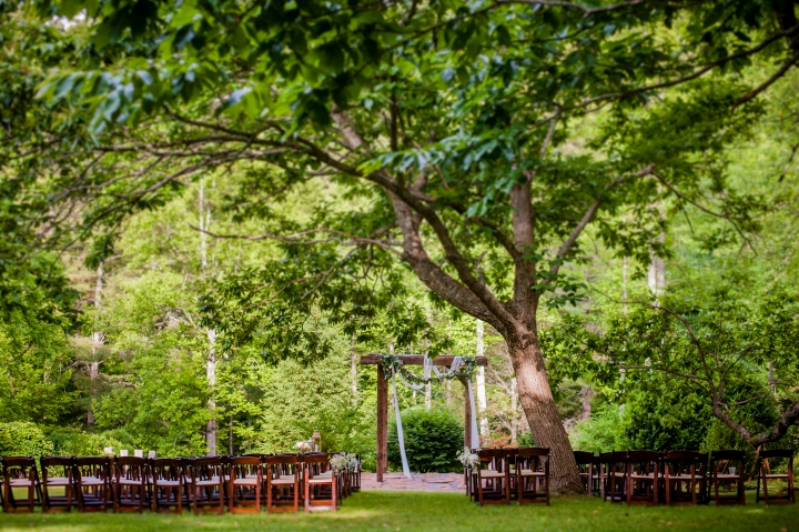 vineyards at bettys creek ceremony under the tree