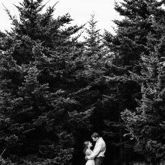 couple embraces in front of pine trees on roan mountain
