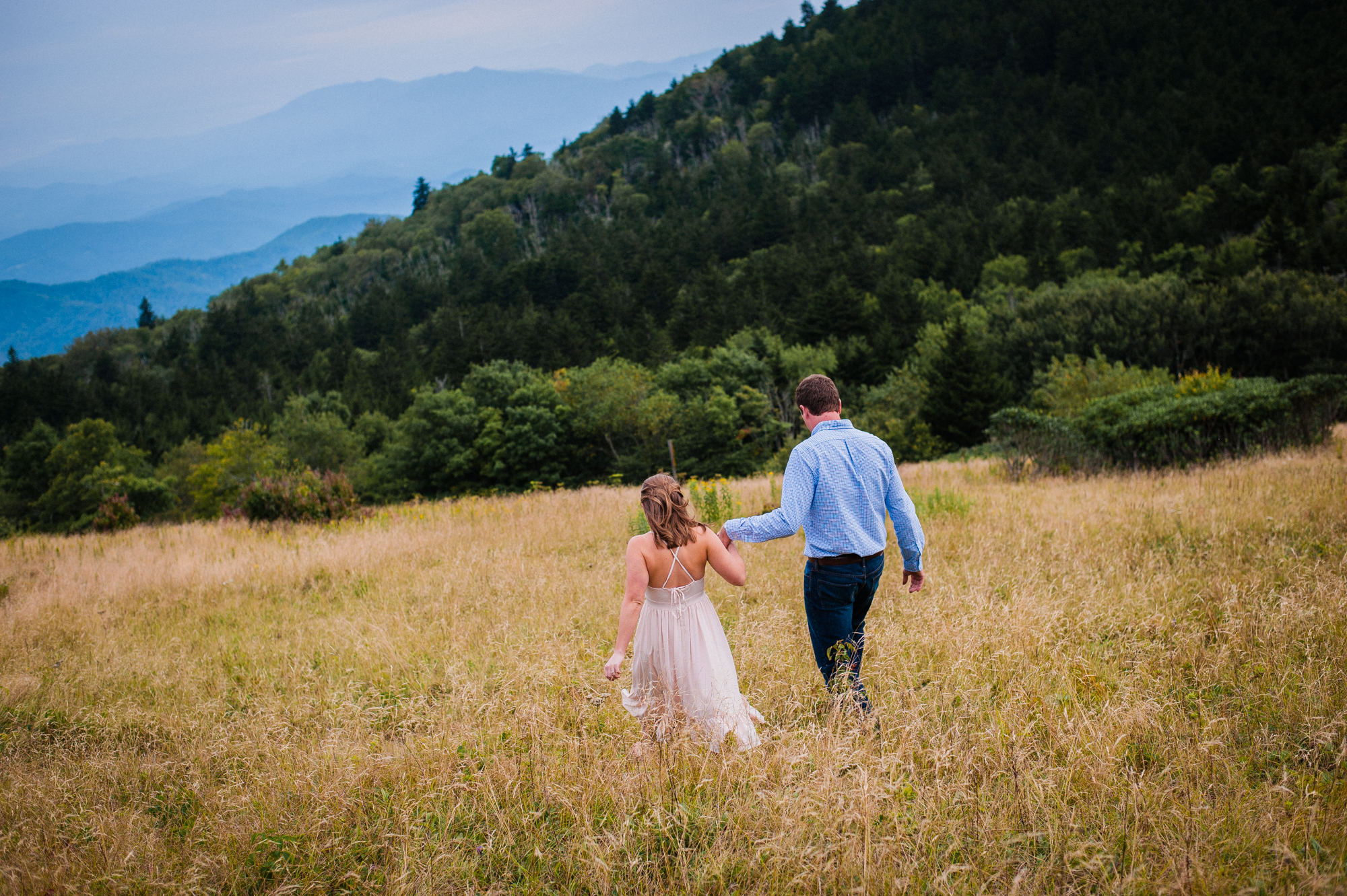 couple holds hands in a field on roan mountain