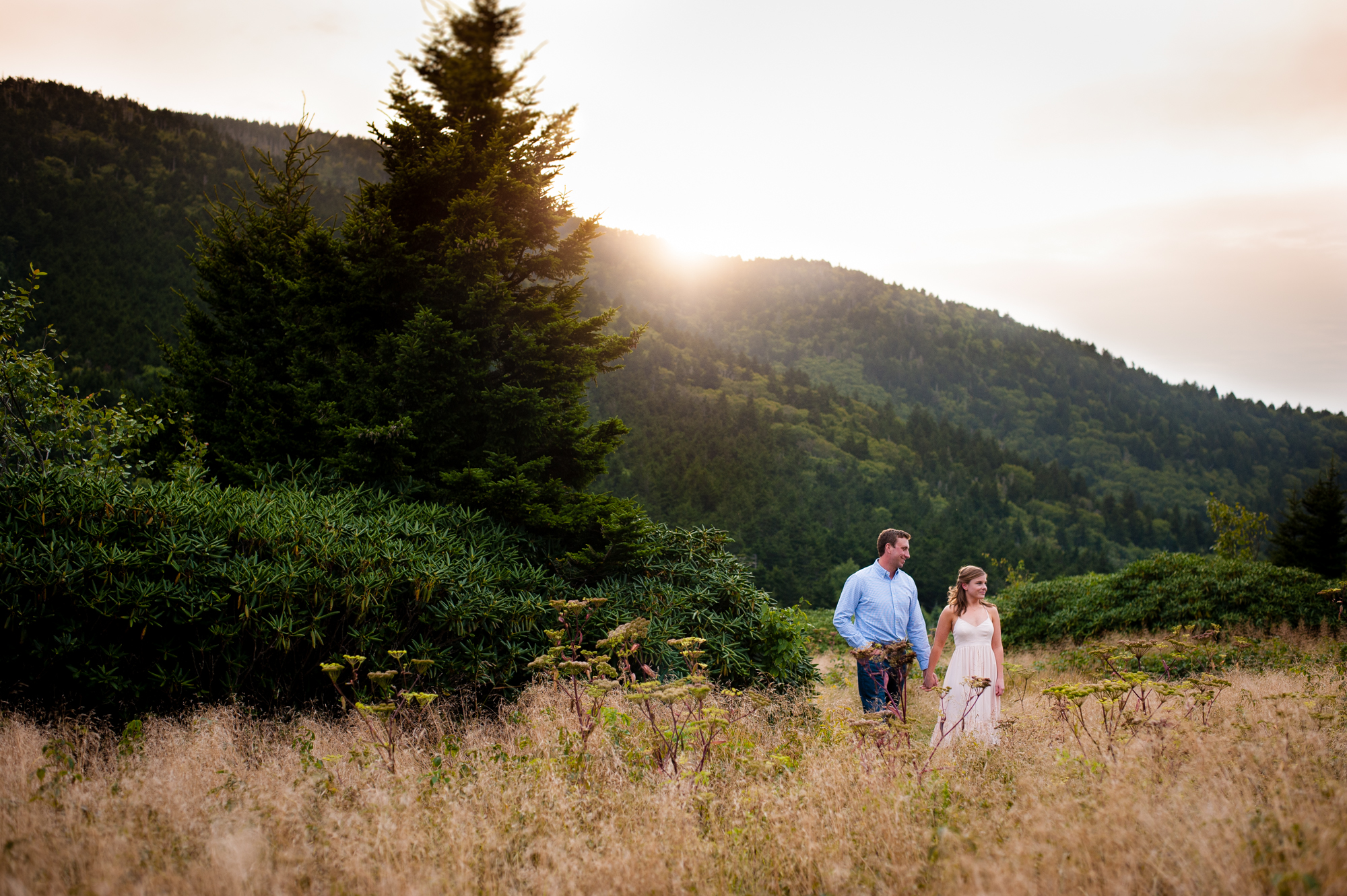 roan mountain engagement session at sunset