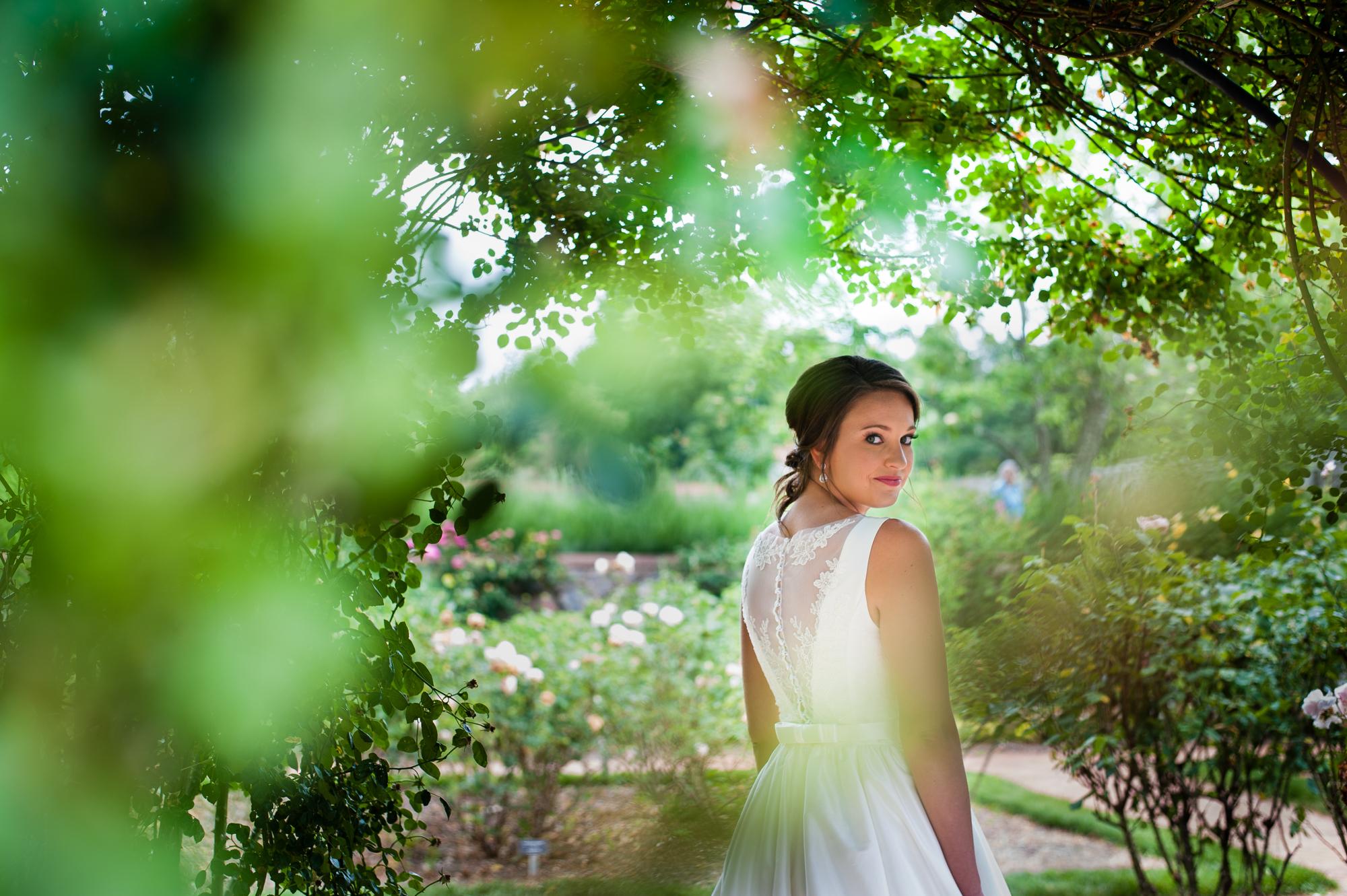 biltmore rose garden bridal portrait