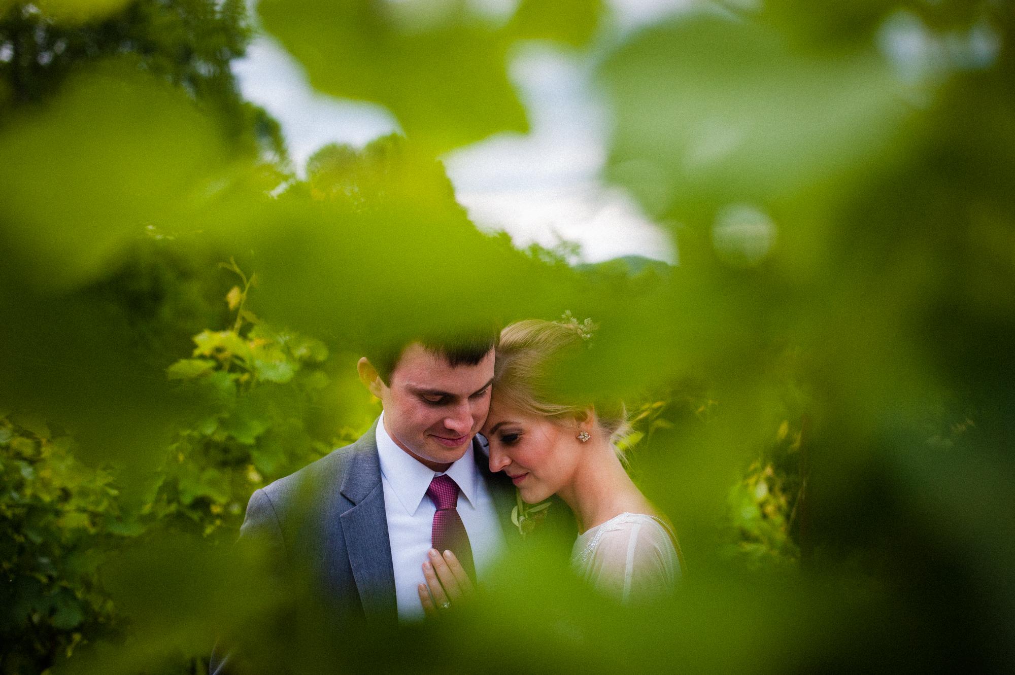 bride and groom in between grapevines during their vineyard wedding