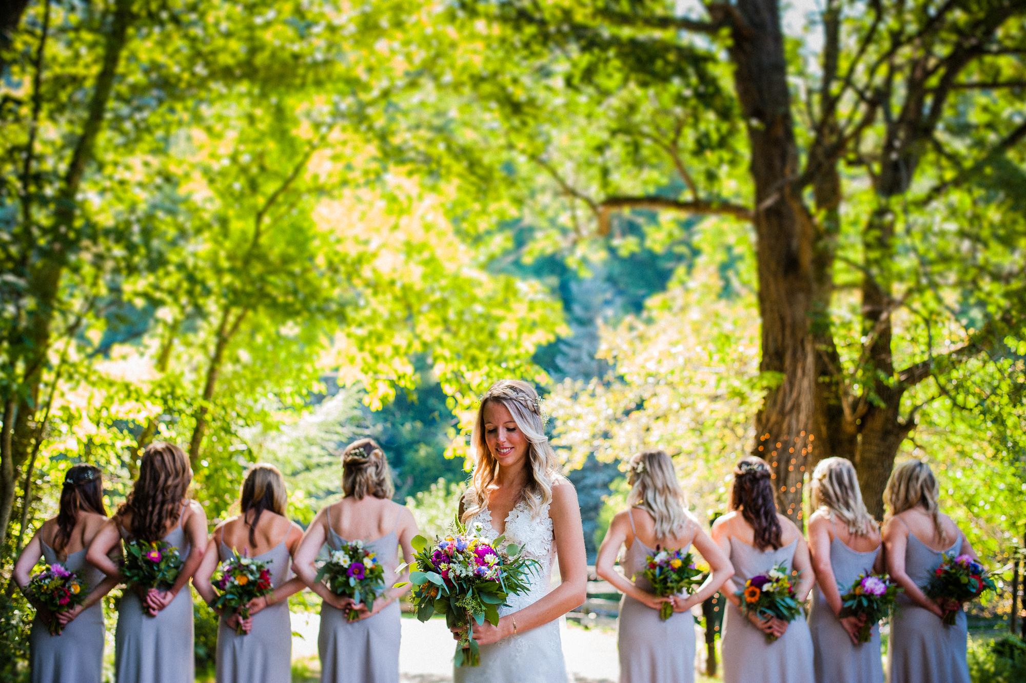 beautiful bride at a farm wedding