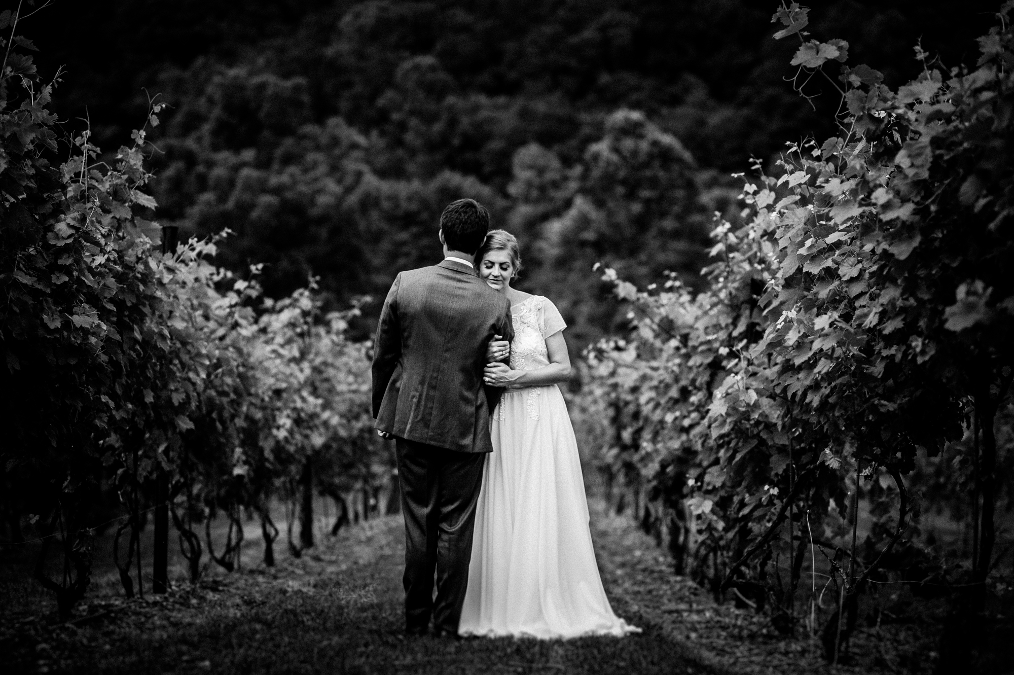 wedding portrait of bride and groom during vineyards at betty's creek wedding