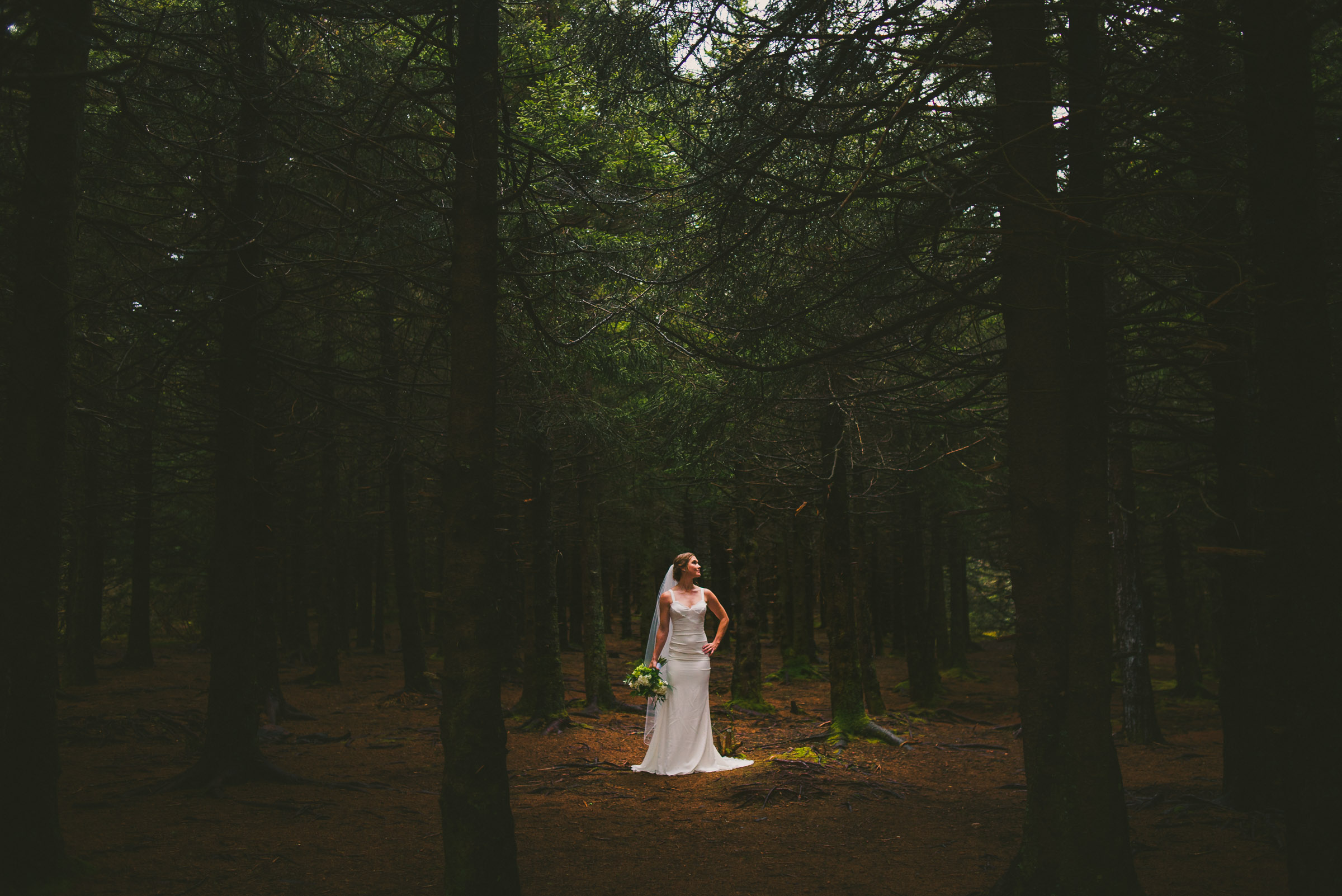 beautiful bride in a dark pine tree forest
