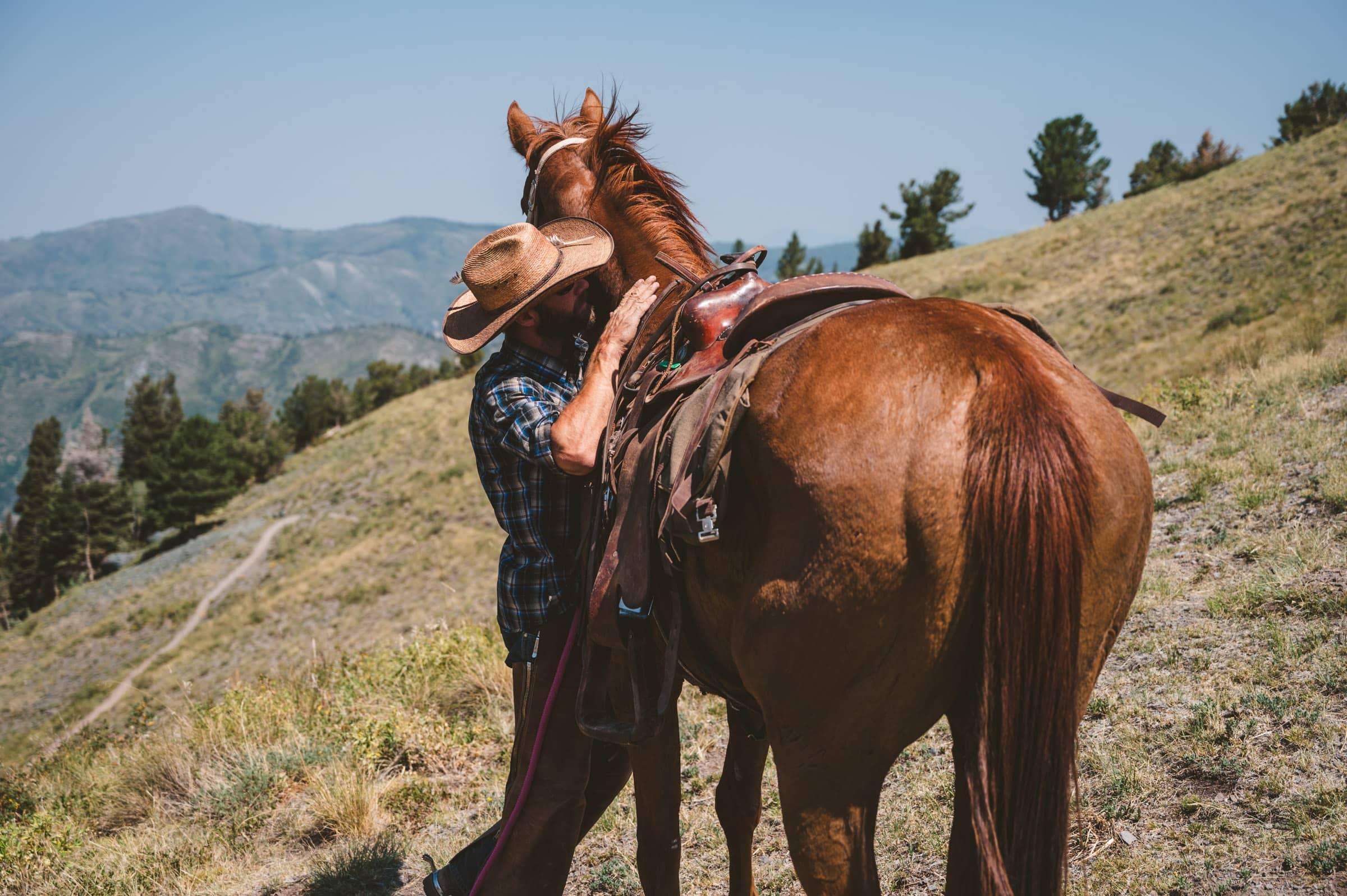 Horsewedding 1